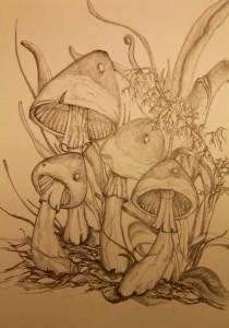 Fantasy mushrooms
